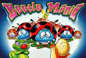Beetle Mania BTD
