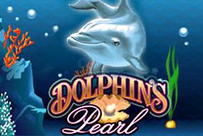 Dolphins Pearl BTD